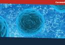 El Coronavirus afecta todos los eventos: Aquí los aplazamientos anunciados.